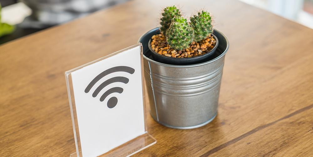 WLAN Symbol mit Kaktus